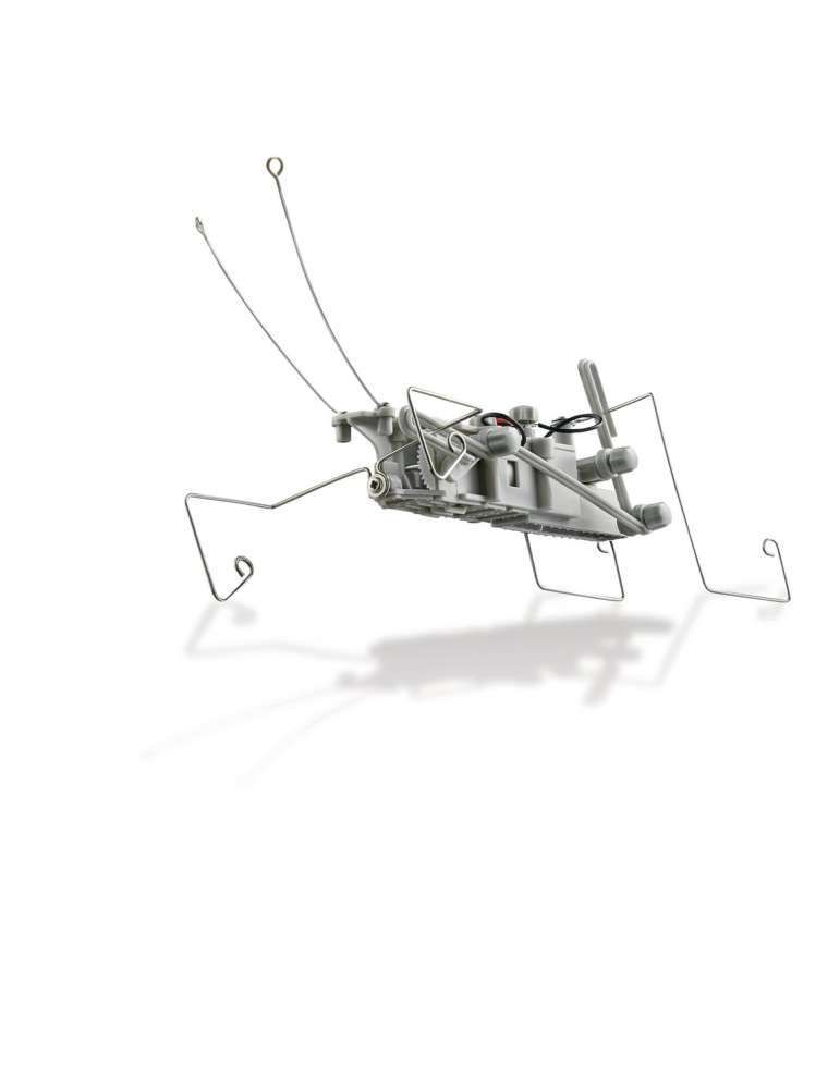 Insectoid - Robot Insecte - 4M - Kidzlabs - Jouet Scientifique