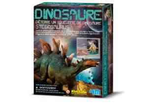 Boite Stegosaurus - 4M - Kidzlabs - Deterre Ton Dinosaure - Jouet Scientifique