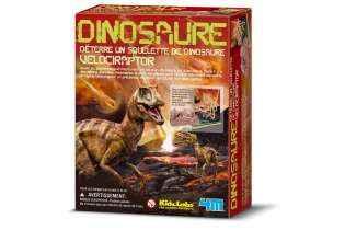 Velociraptor- 4M - KidzLabs - Déterre ton Dinosaure - Dig a Dino