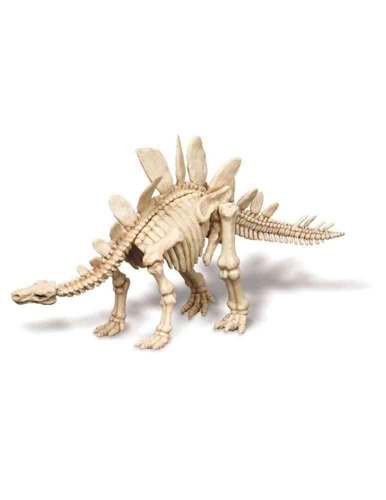 Stegosaurus - 4M - Kidzlabs - Deterre Ton Dinosaure - Jouet Scientifique